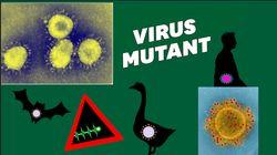 Vous avez déjà eu un coronavirus, mais voici pourquoi celui-ci inquiète
