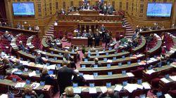 Le Sénat vote l'ouverture de la PMA pour toutes les