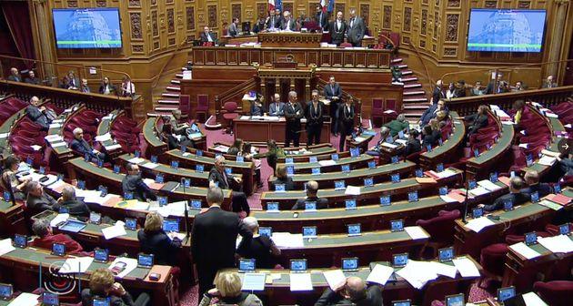 Le Sénat vote l'ouverture de la PMA à toutes les