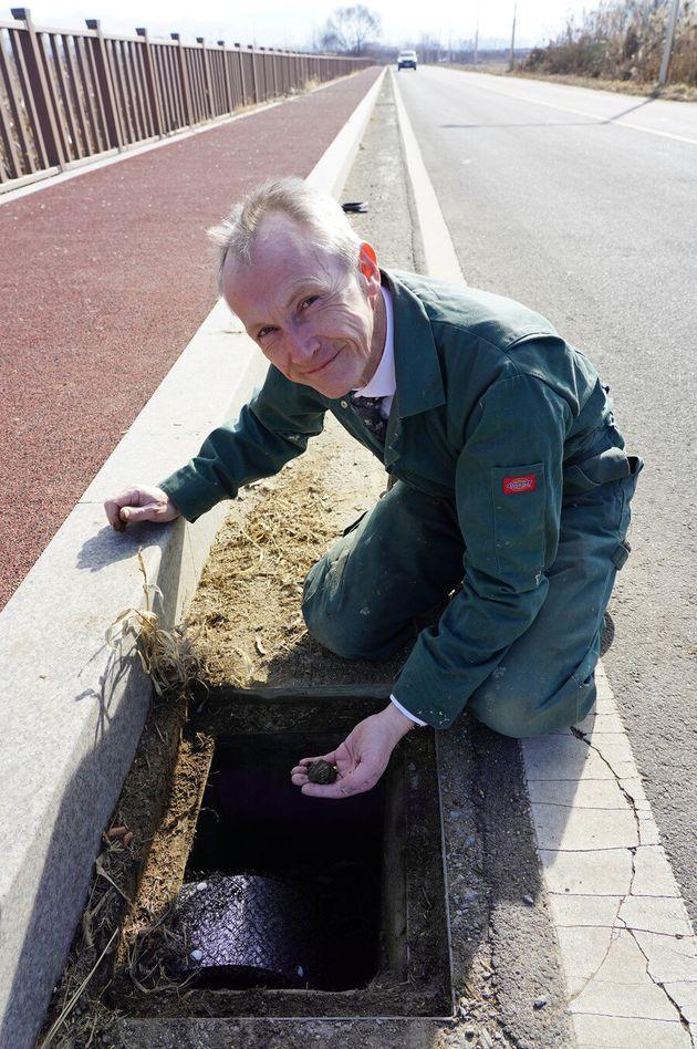 지난 21일 영국파충류협회 트레버 로즈 사무국장이 경기 연천군 전곡읍 은대리 물거미 서식지 옆 도로 맨홀에 '개구리사다리'를 설치한 뒤 겨울잠을 자는 참개구리를 꺼내 보이고