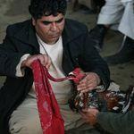 Η εκδίκηση του κόκορα: Σκότωσε τον άνδρα που τον πήγαινε σε