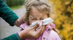 Οδηγίες και μέτρα κατά της διασποράς της γρίπης στα ελληνικά