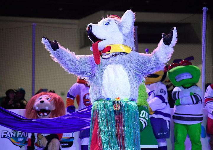 Harvey the Hound of the Calgary Flames at the 2019 NHL All-Star Fan Fair in San Jose, California.