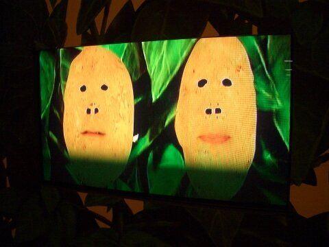 The Talking Tubers at Potato World.