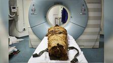 Wissenschaftler Neu Klingen Der 3000 Jahre Alten Ägyptischen Mumie
