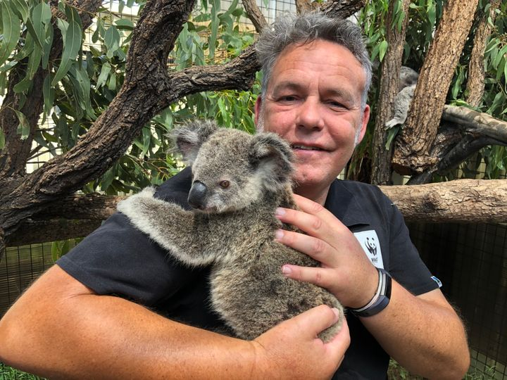 Darren Grover, an official with the World Wide Fund for Nature-Australia enjoys a cuddle with Maryanne as the koala continues her recovery.