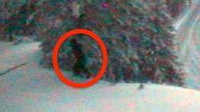 Sasquatch Είδαν; DOT Λέει Την κάμερα της τροχαίας Έπιασε Ένα Bigfoot... Ίσως