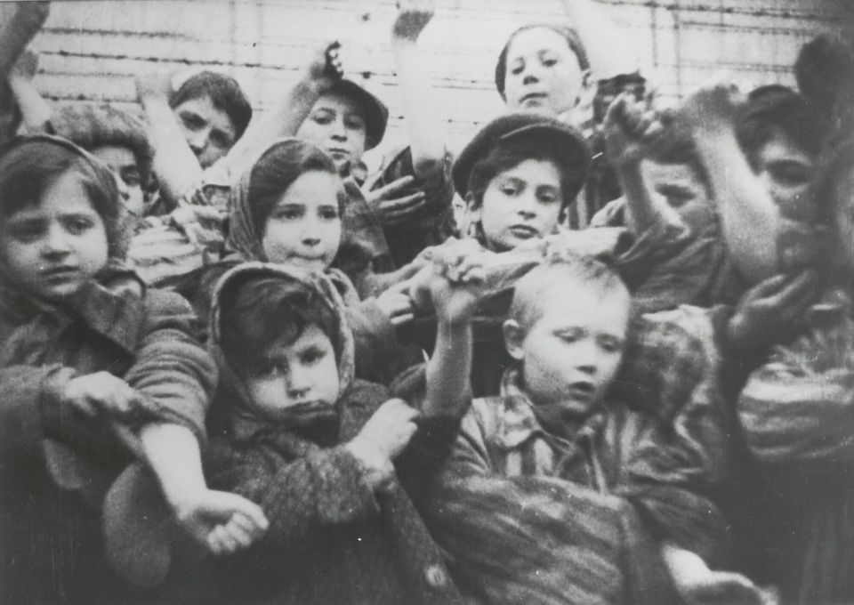 The children in the Auschwitz-Birkenau concentration camp in showing their tattooed numbers on their...