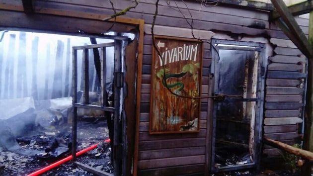 Au zoo de la Flèche, plus de 50 animaux meurent dans un incendie