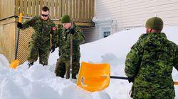 Police Find Body Of Newfoundland Man Gone Missing During