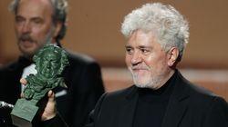 'Dolor y gloria' triunfa en los Goya 2020 con siete premios, incluidos Mejor película, actor y