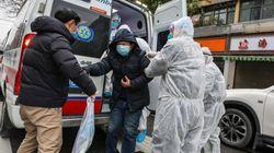 Virus cinese, l'epidemia si allarga: oltre 80 morti e 2835 contagi. A picco le borse