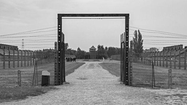 Un racconto di resistenza, da Birkenau
