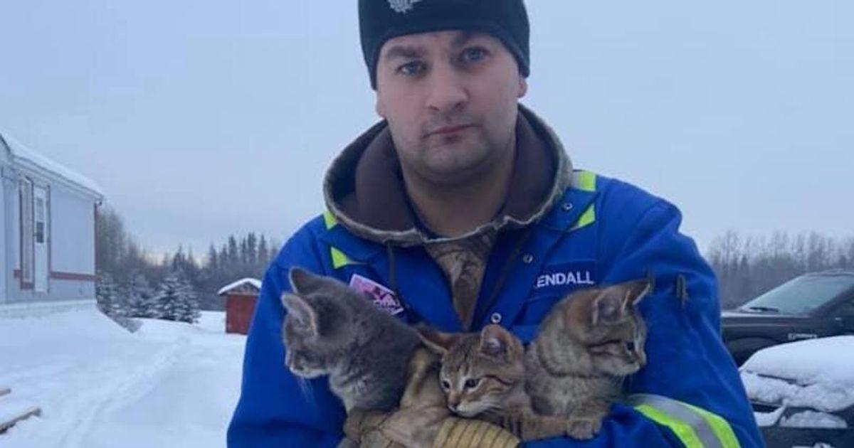 「ヒーロー」は彼のコーヒーを注いで、極寒のアルバータで死者のために残された子猫を救出する