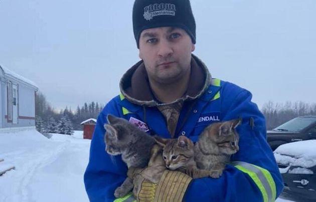 ケンダル・ディウィッシュは苦いから救出した3匹の子猫と一緒に写真を撮る
