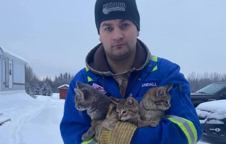 Kendall Diwisch poses for a photo with the three kittens he rescued from the bitter cold.