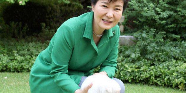 '민간인 박근혜'가 처음으로 고발당했다. 당신이 생각하는 이유와는 전혀