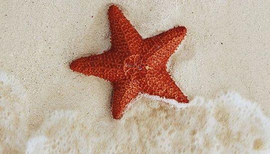 당신의 방랑벽을 일깨울 전 세계 해변