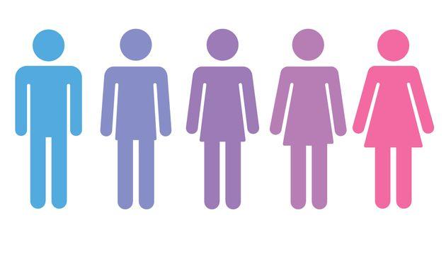 O estudo também revela que 67% dos assassinatos foram contra travestis e mulheres transexuais...