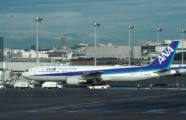 中国・武漢から羽田空港に到着したチャーター機(1月29日撮影)