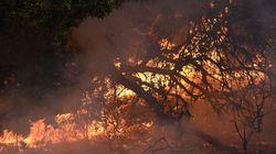 Toυς 26 έφτασαν οι νεκροί από τις πυρκαγιές στην Καλιφόρνια. Αγνοούνται εκατοντάδες