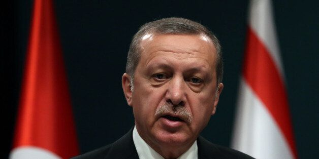 Turkish President Recep Tayyip Erdogan speaks to the media after talks with newly elected Turkish Cypriot...