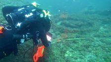 謎のバミューダの三角形'幽霊船を発見した95年後の消滅