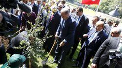 Τουρκία: «Νεκρό» το 90% των 11 εκατ. δένδρων που φυτεύτηκαν ως «ανάσα για το