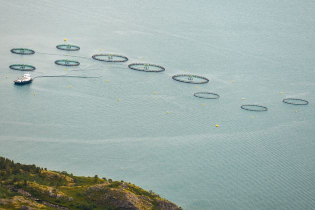An aerial view of a salmon farm near the islands of Rolla and Andorja in Norway. Norway is the world's...