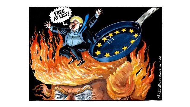 Peter Brookes - The Times