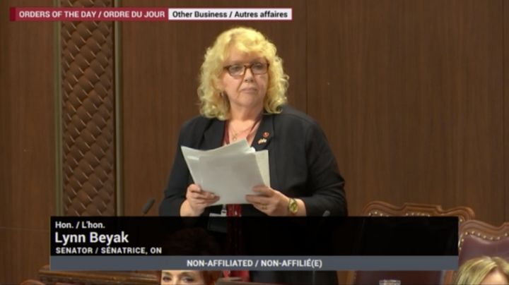 Sen. Lynn Beyak delivers a statement in the Senate chamber in response to a Senate Ethics Office report on May 9, 2019.