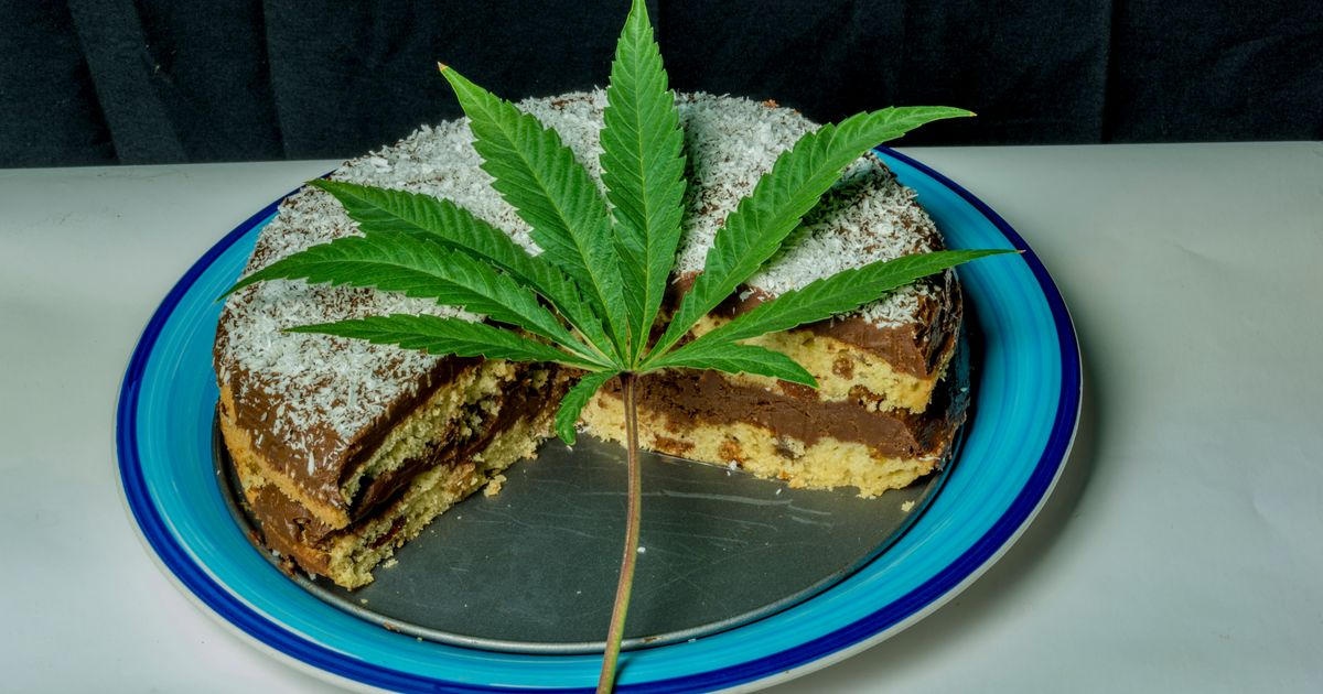 People At N.S. School Event Became Sick After Eating Cannabis-Laced Cake