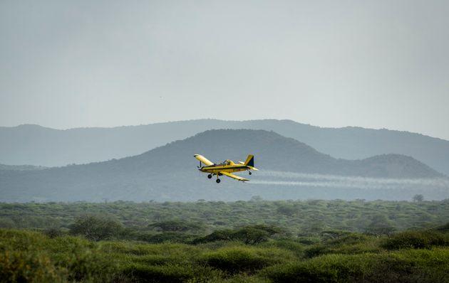 ケニアで、飛行機からバッタの群れに農薬を散布する様子=2020年2月1日撮影