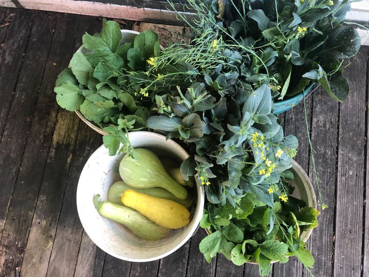 The Community Ecology Institute in Columbia, Maryland, is growing vegetables with the help of high school students to help ta