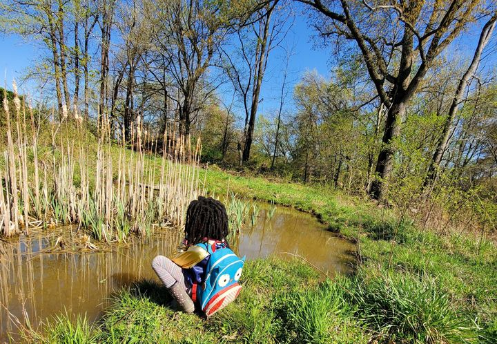 A child sits next to a pond filled with wildlife at BLISS Meadows in Baltimore.