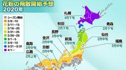 花粉シーズン、東京など1都14県が突入。飛散ピークは2月中旬ごろ