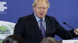 L'ambiguità ambientale di Boris