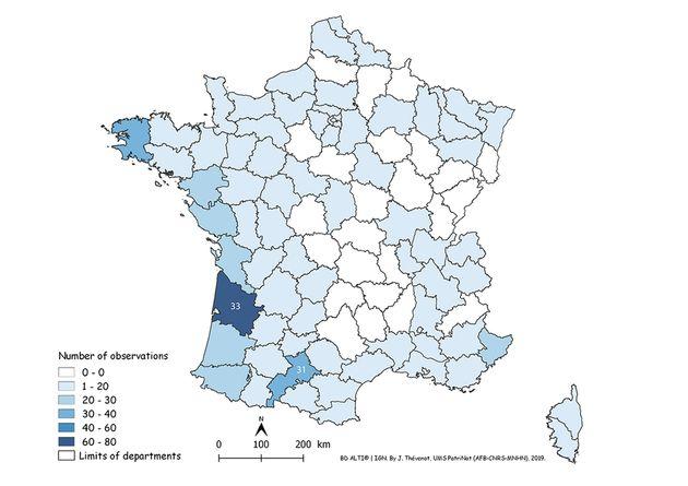 Présent dans toute la France, il a une préférence pour les secteurs chauds et