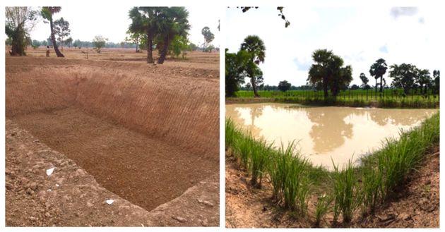 現地のため池。雨季には水が満杯になる。左:2019年3月、右:2019年10月