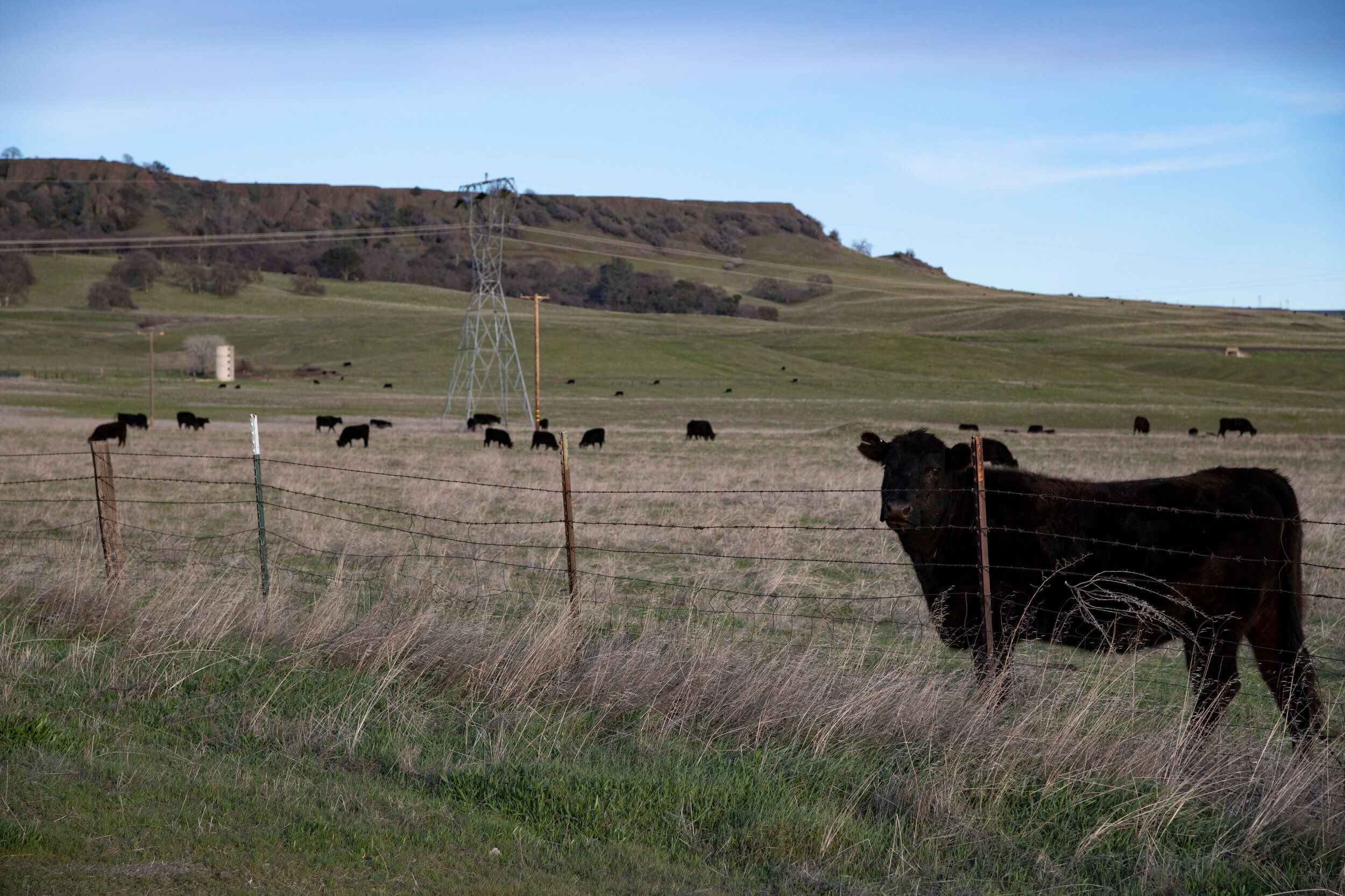 Scenes from Brown's ranch in Butte County. She refers to it as Brown Ranch, but it is also known as Table Mountain Ranch.