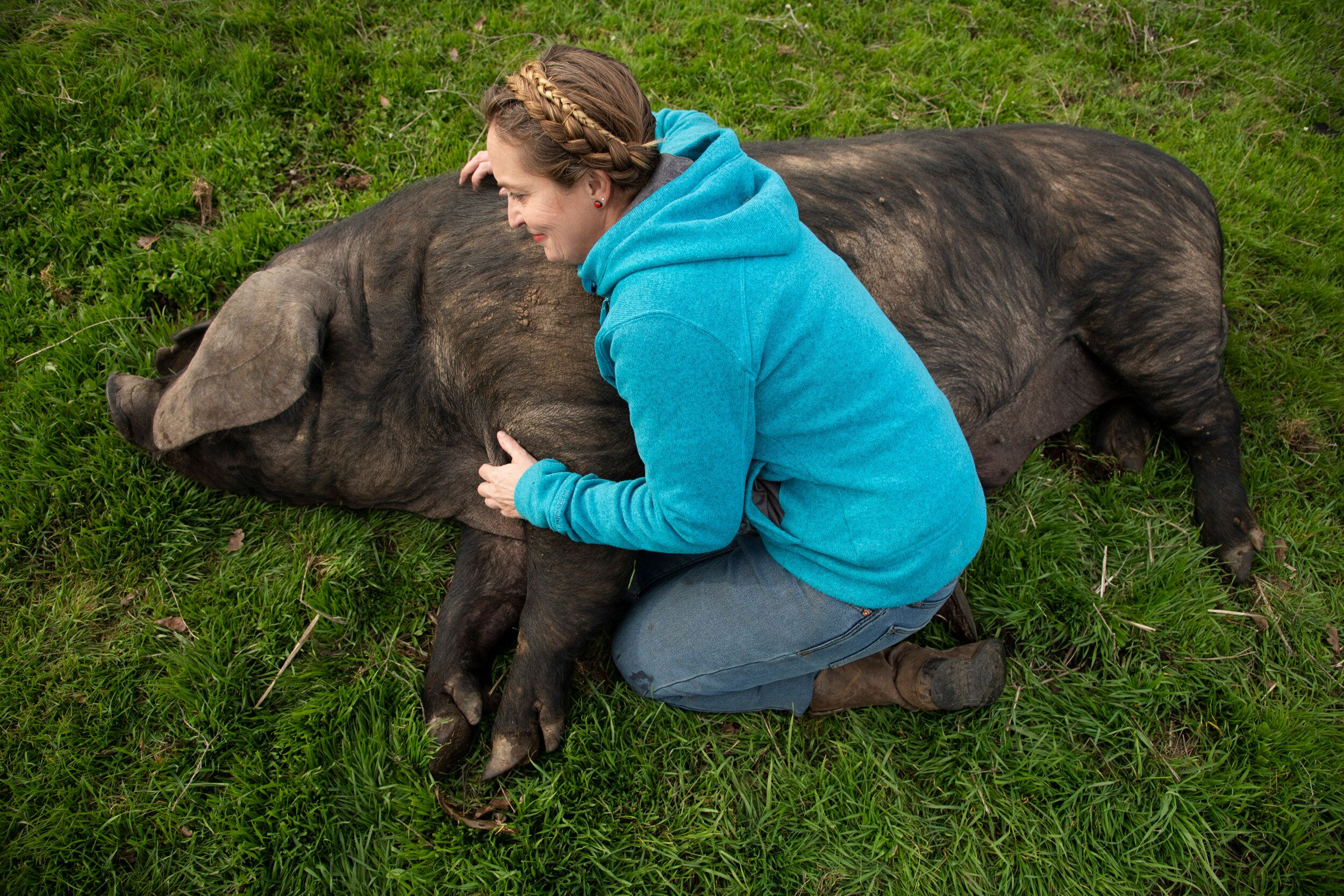 Brown gives one of her pigs a belly rub on her ranch.