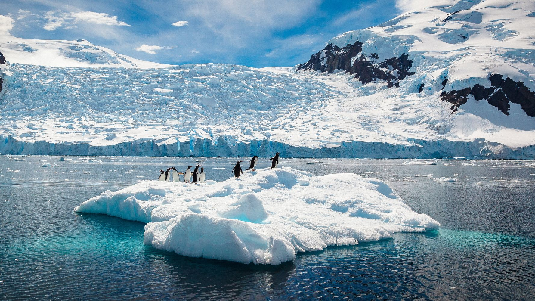 Antarctica Hits 64.9 Degrees, Highest Temperature Ever Recorded On Continent