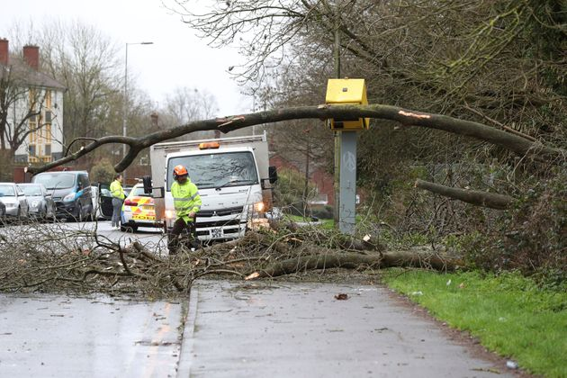 Workmen clear up after tree fell on a speed camera in Tilehurst,