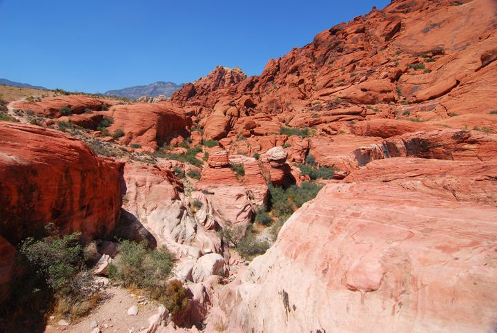 Red Rock Canyon National Conservation Area is a beautiful site just outside the city.