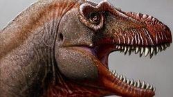 «Θανατοθεριστής»: Φονικός «ξάδελφος» του Τυραννόσαυρου Ρεξ ανακαλύφθηκε στον