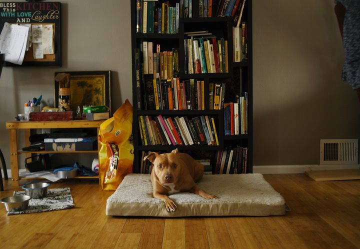 Merry relaxes on her bed at her home in Arvada on Feb. 6.