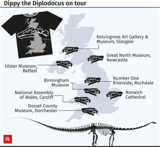Natural History Museum'S Dippy The Diplodocus Begins UK