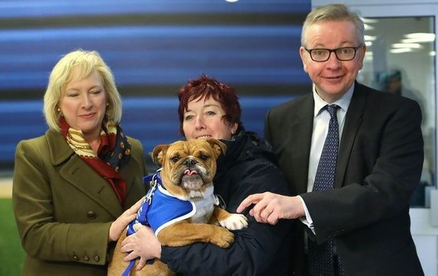 Michael Gove Must Go Back To The Drawing Board With Plans To Improve Animal