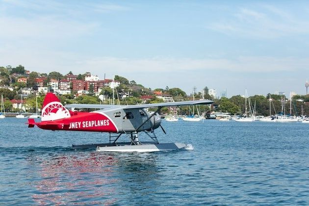 Sydney Seaplane Crash: Experienced Pilot'S Actions Were 'Totally