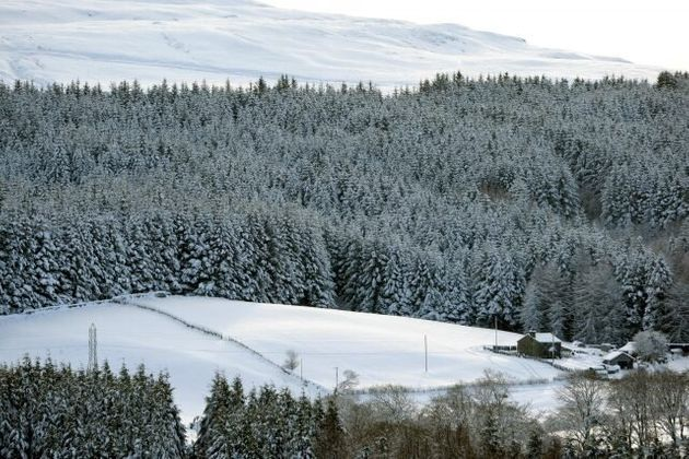 Arctic Warming Could Be Linked To Wet Summers And Severe Cold Snaps In
